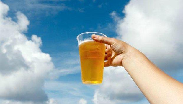 program pivo