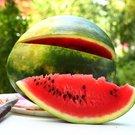 Už jste zkusili palačinky s melounem, zmrzlinou a šlehačkou?
