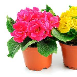 kytky 3