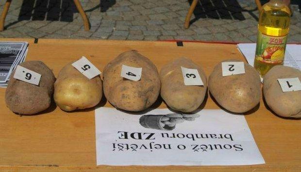 program 15 brambory