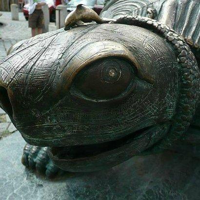 olomouc želva