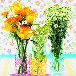 Vlasta 30 - 31 Rozkvetlý svátek 6