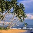 Tropical Beach, Srí Lanka