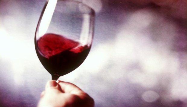 červené víno, degustace
