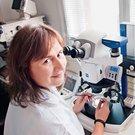 Hana Šuláková: V laboratoři vede estrogen