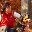 psi zachranci rez
