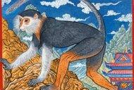 čínský horoskop, znamení 6