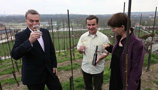 slámové víno botanická primátor